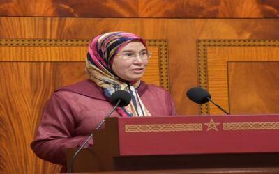 قدمت السيدة نزهة الوفي، الوزيرة المنتدبة المكلفة بالمغاربة المقيمين بالخارج، مجموعة من مشاريع القوانين يوافق بموجبها على اتفاقيات دولية اليوم الثلاثاء  21 أبريل بمجلس النواب