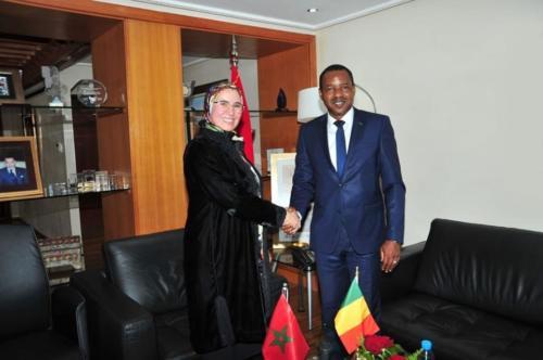 Ministre des Maliens de l'Extérieur